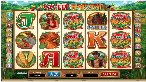Fin cash out slots play
